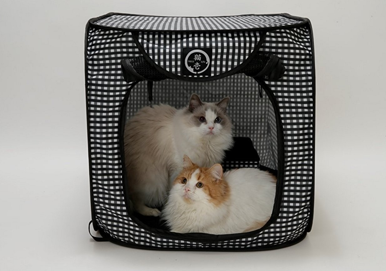 ⭐ 15 Best Cat Carrier Reviews In 2017 ⋆ ✅ Anytime Magaine